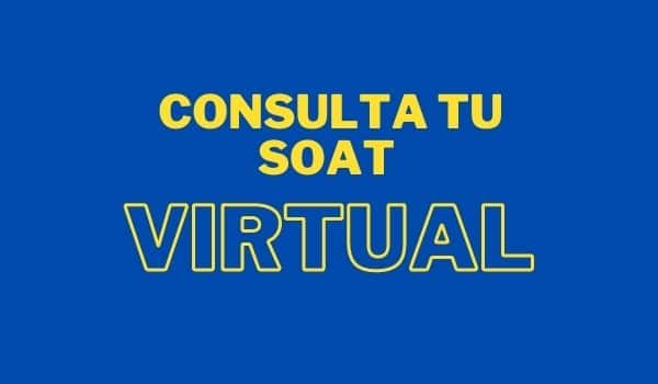 Consulta tu soat virtual